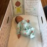 BabyinaBoxwithFlatStanley