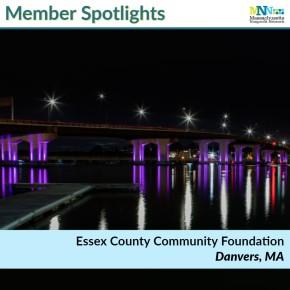 Member Spotlight ECCF-min