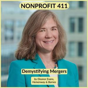 Nonprofit 411 H&B-min
